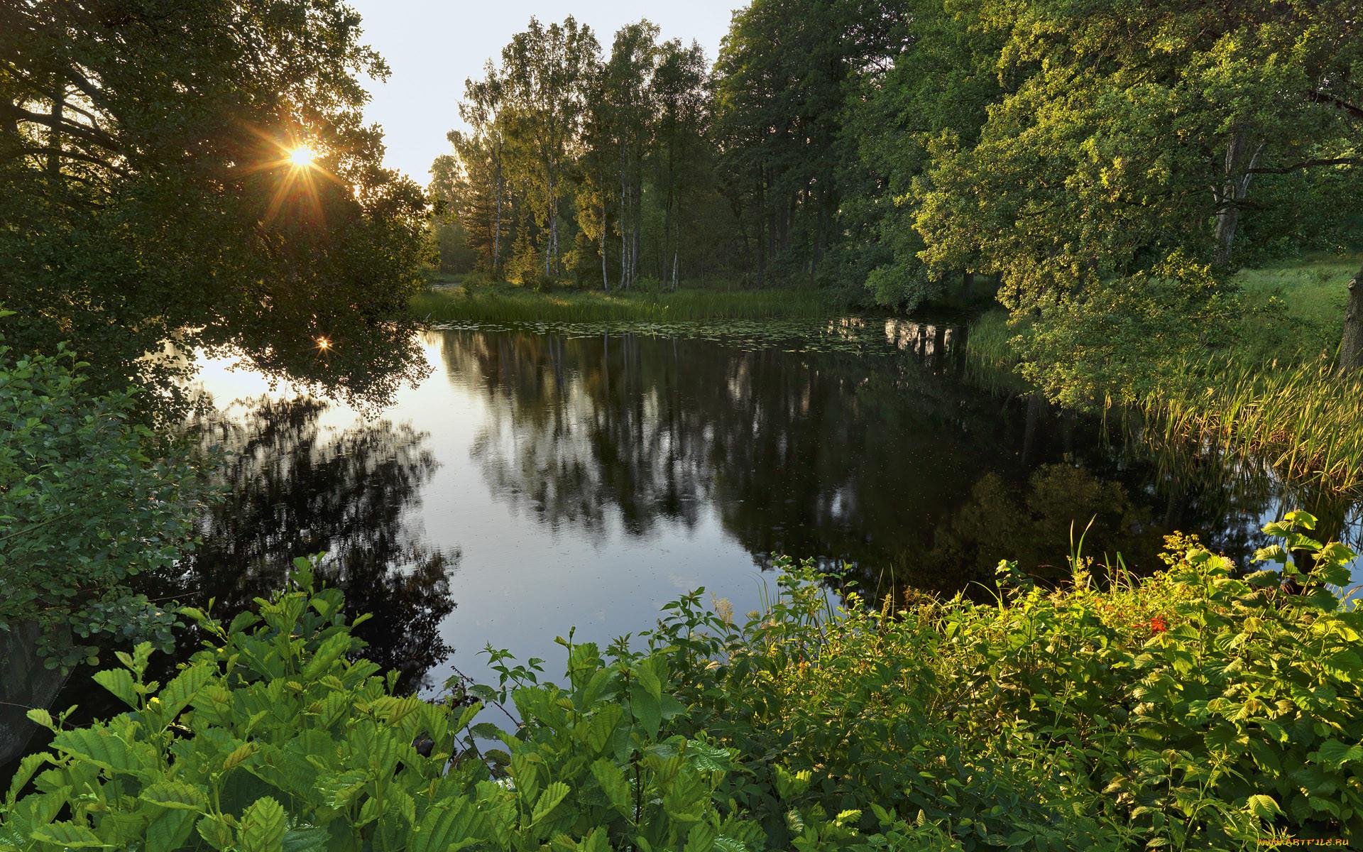 наш тихая заводь картинки река озеро были еще дуэльные